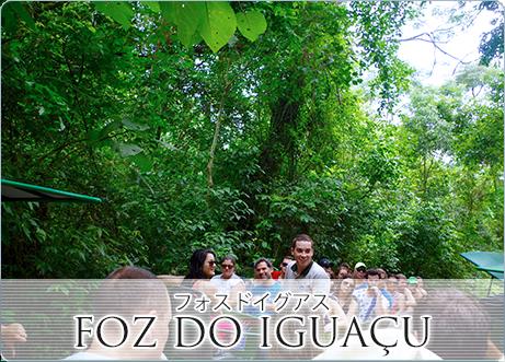 フォスドイグアス